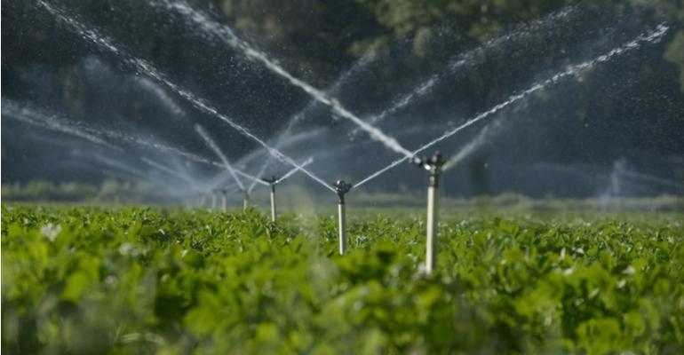 Como irrigação à distância e com precisão facilita o manejo da fazenda.jpg
