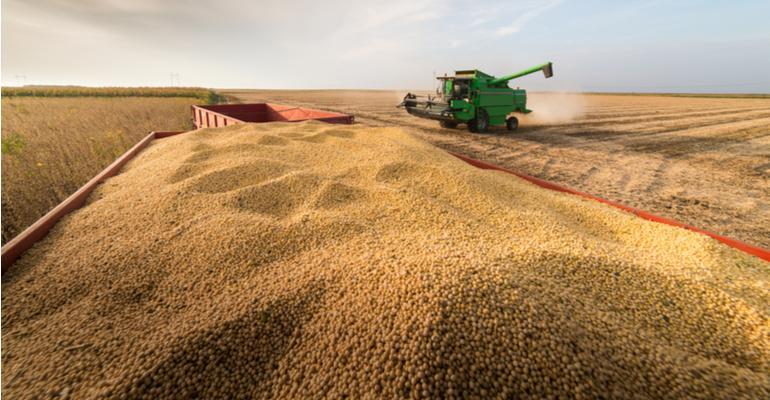 Desafios da Soja - Preço, Demanda e Clima .jpg