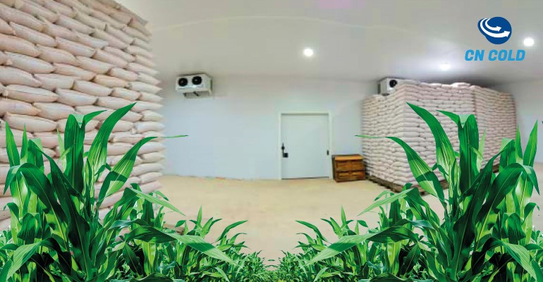 Economia energética no armazenamento de grãos e sementes.png