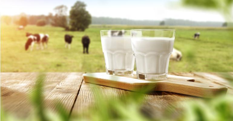 Novas soluções em ordenha e os robôs na produção leiteira.jpg