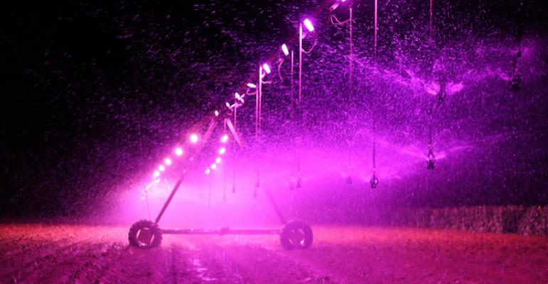 Saiba mais sobre irrigação por luz noturna seus benefícios.png