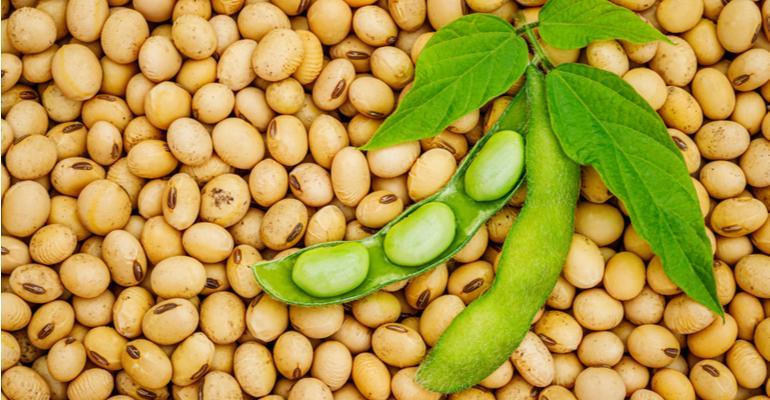 Soja puxa aumento produtivo de grãos em 2021.jpg