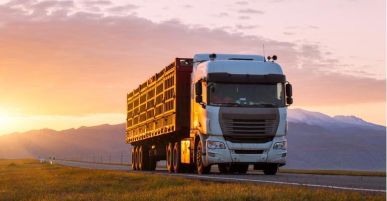 Transporte no agronegócio alta performance em uma linha completa.jpg