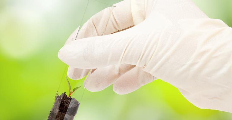 Com que frequência devo analisar o solo e as melhoras formas de fazer?