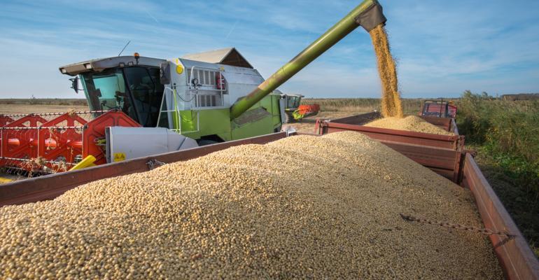 7 soluções para driblar os altos custos produtivos da soja