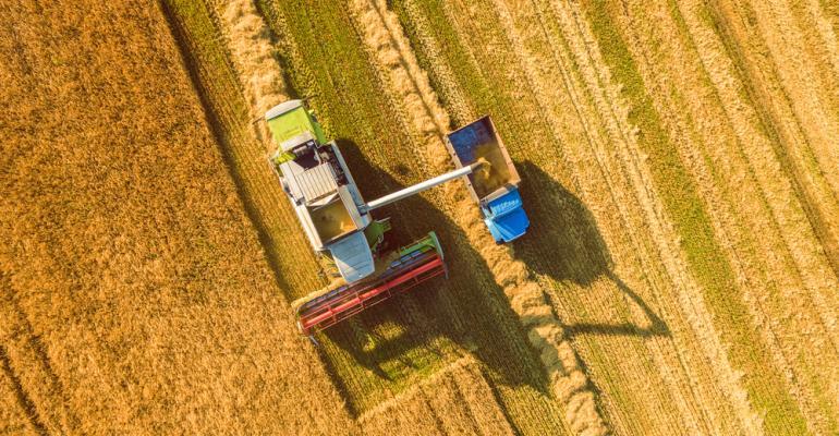 perdas da lavoura - riscos climáticos