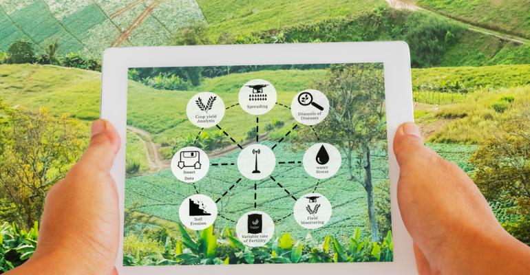 Rastreabilidade agrícola segurança alimentar em toda a cadeia produtiva