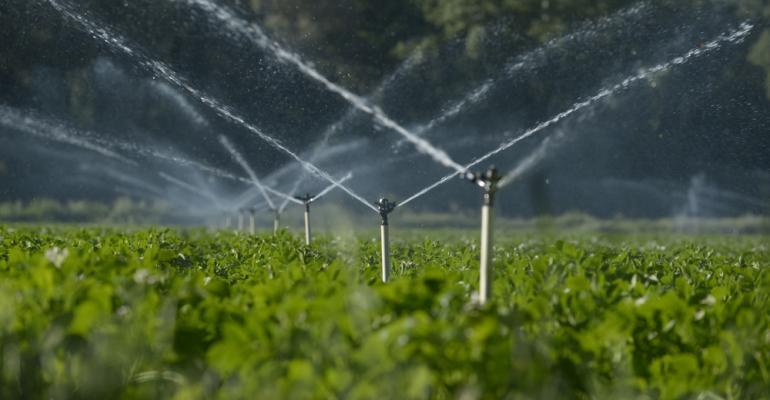 Produza mais e melhor com o sistema certo de irrigação para sua produção