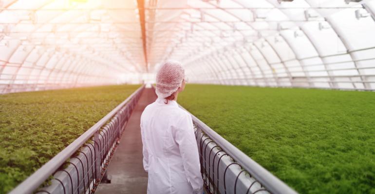 biotecnologia-agrishow