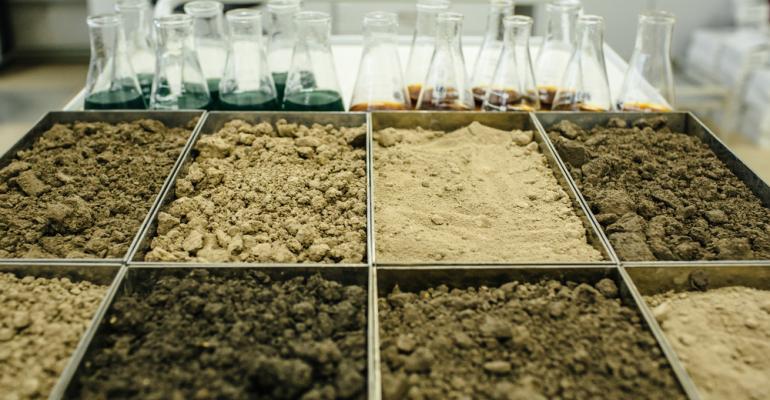 Como a análise do solo brasileiro pode te ajudar