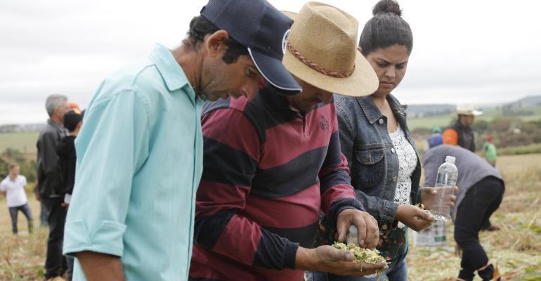 Soluções para o pequeno produtor e agricultura familiar