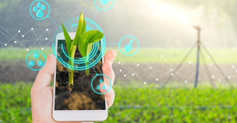 Softwares em campo! Veja novas soluções tecnológicas para o produtor
