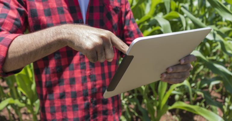 Pequeno e médio produtor: conheçam tecnologias para suas produções