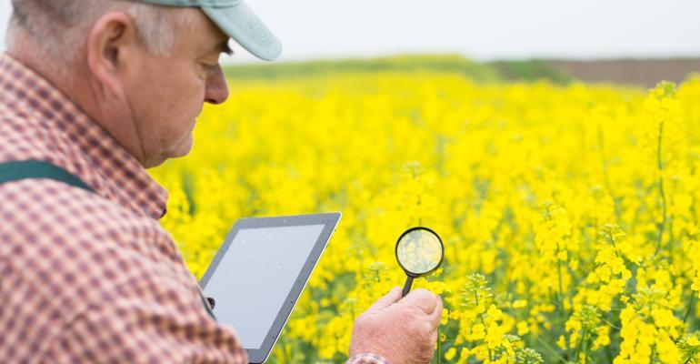 Qual o futuro do monitoramento de pragas?