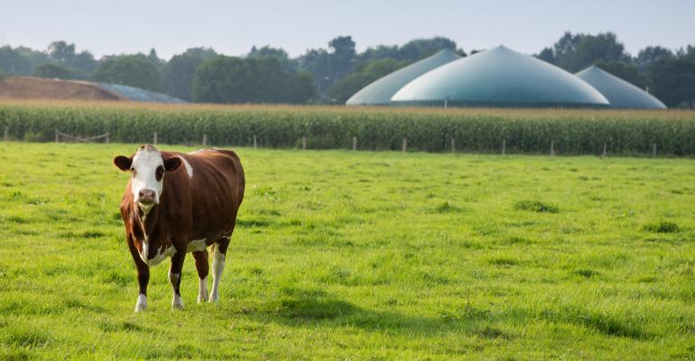 Qual o prazo de retorno do investimento em biogás?