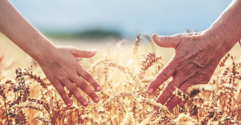 Desafios e oportunidades para a agricultura familiar