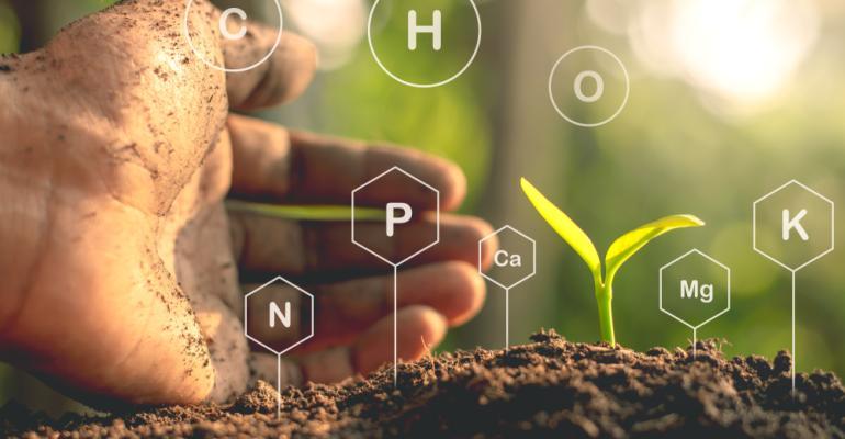 Melhore a sua produção com essas ferramentas nutricionais agrícolas