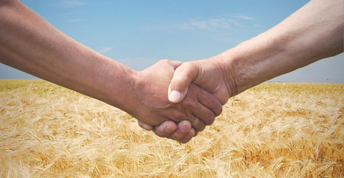Guia completo sobre o arrendamento de propriedades rurais