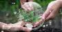 Diversifique seus ganhos monetizando créditos de carbono!.png