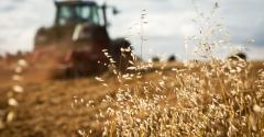 Por que investir em um seguro rural?