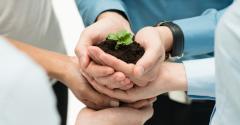 Grãos e exportações impulsionam crescimento de cooperativas agropecuárias