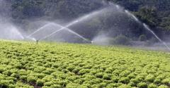 Metade da água usada pela agricultura é desperdiçada. Saiba como otimizar uso