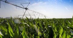 Quais ferramentas para o futuro da irrigação para o agronegócio?