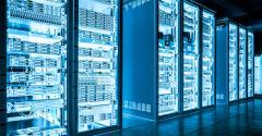 Especialistas listam todas as vantagens em usar Big Data na pecuária