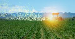 inteligencia-artificial-agricultura