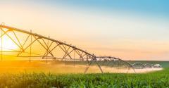 PSA é alternativa para manter a saúde da terra
