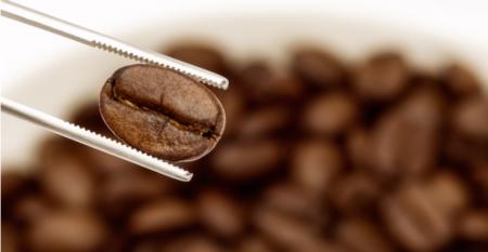 O marketing dos cafés especiais .png