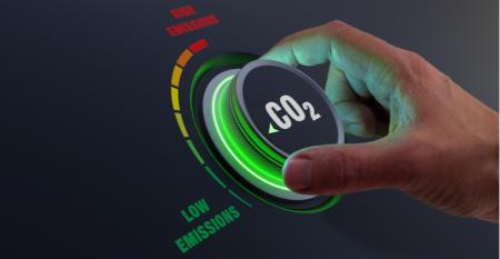 Revelamos os segredos da produção de créditos de carbono.png