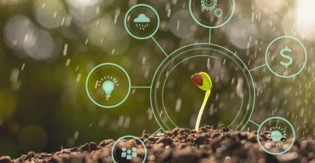 Startups para agronegócio no Brasil: desafios e oportunidades