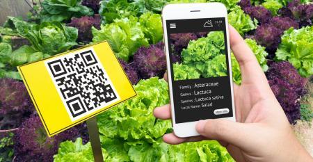 Análise meteorológica e outras vantagens do IoT para o agronegócio