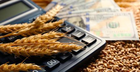 """""""O crédito rural pode ser simplificado e repaginado"""", afirma ex-secretário de Política Agrícola do governo"""