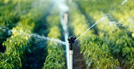 Entenda como a fertirrigação pode ajudar em sua produção