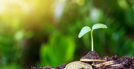 Agronegócio sustentável, vale a pensa ser um?