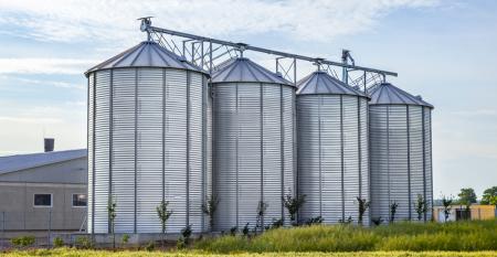 Planeja ter um silo em sua fazenda? Saiba como se organizar