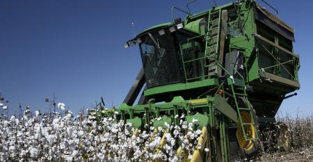 Aplique o Big Data na cultura de algodão em 3 passos