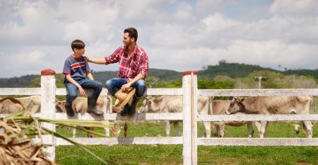 Sucessão familiar rural: como conduzir processo