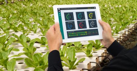 4 principais ferramentas de monitoramento da produção agrícola