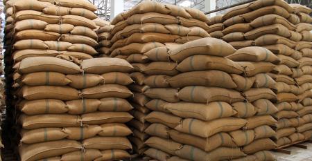 Quais os principais erros que você deve evitar na estocagem de sementes?