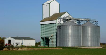 Armazenagem dos grãos: manejo fundamental para garantir a qualidade do produto