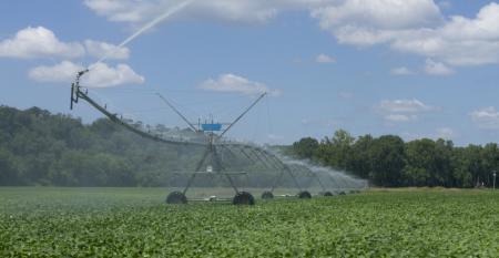 Irrigação: solução indispensável para alcançar altos níveis de produtividade