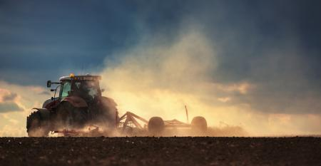 Como preparar o solo para a rotação de culturas?