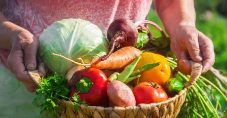 Por que participar de banco de alimentos é opção para produtores familiares?