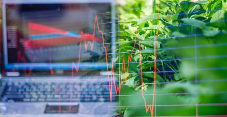 Crédito: um grande desafio do mercado de insumos agrícolas